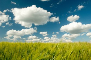 Everyone likes clouds, but what questions should you be asking about them?